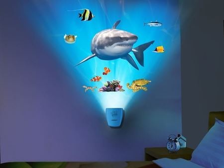 Picture of Wild Walls - Shark Encounter